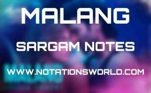 Malang (Title Track) - Sargam And Flute Notes