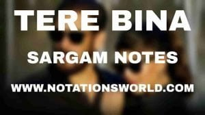 Tere Bina (Salman Khan) - Sargam And Flute Notes