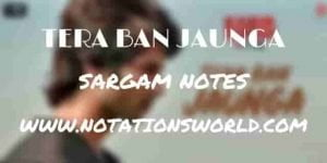 Tera Ban Jaunga (Kabir Singh) - Sargam And Flute Notes