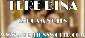 Tere Bina Sargam And Flute Notes